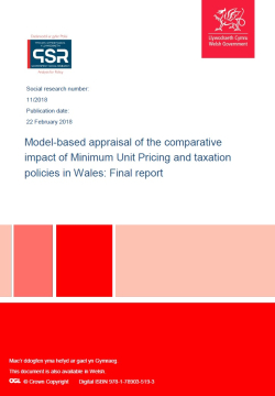 Wales MUP tax SARG report 2018