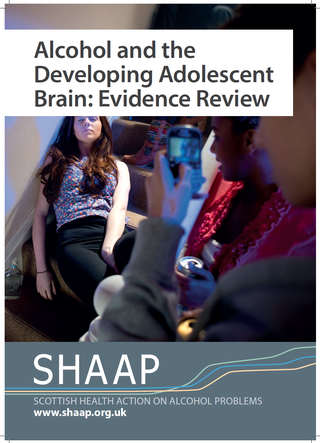 SHAAP adolescent brain